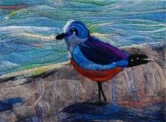 161. Shore birds